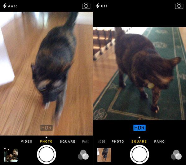 iOS 7: Music, Videos, Photos + Camera 25