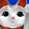 Gear Guide: Maneki Neko 招き猫