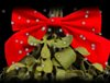 Gear Guide: MistleSnow – Pocket Mistletoe for iPhone and iPod Touch