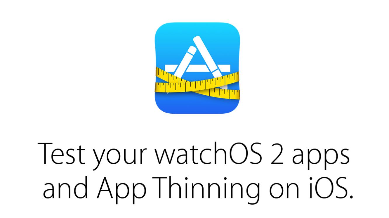 Apple adds native Watch app support to TestFlight 1