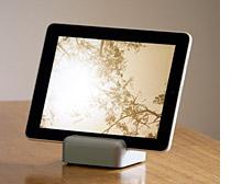iPad Mix: Modgrain, WedgePad, iGear, ClayWare, EasyStand 1